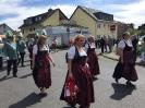 Bezirksbundesfest 2015_11